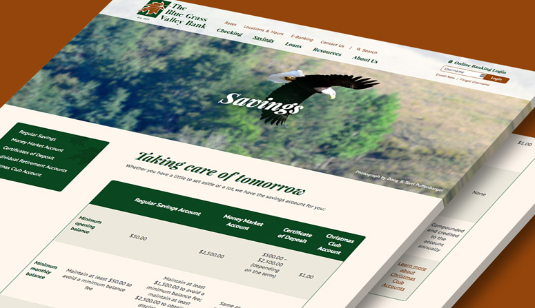 The savings page, managed by BrownBoots' simple content management system (CMS)